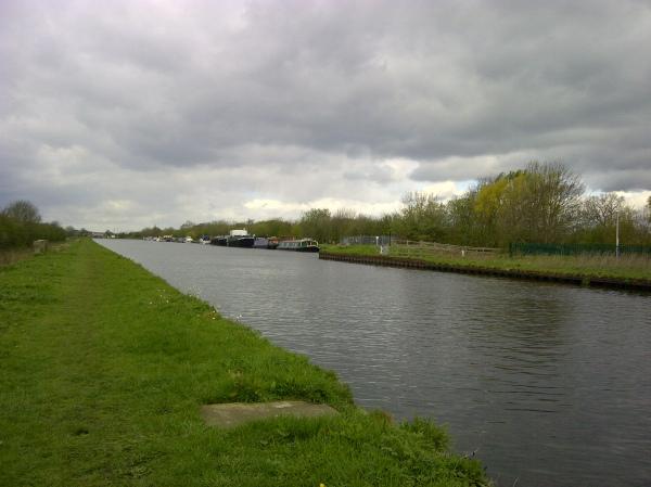 Pollington canal spring 2012